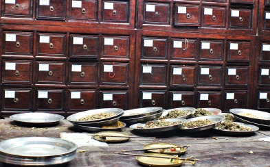 traditional herbal pharmacy
