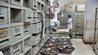 herbal pharmacy in the TCM hospital