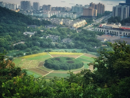 Bagua Fields in Hangzhou